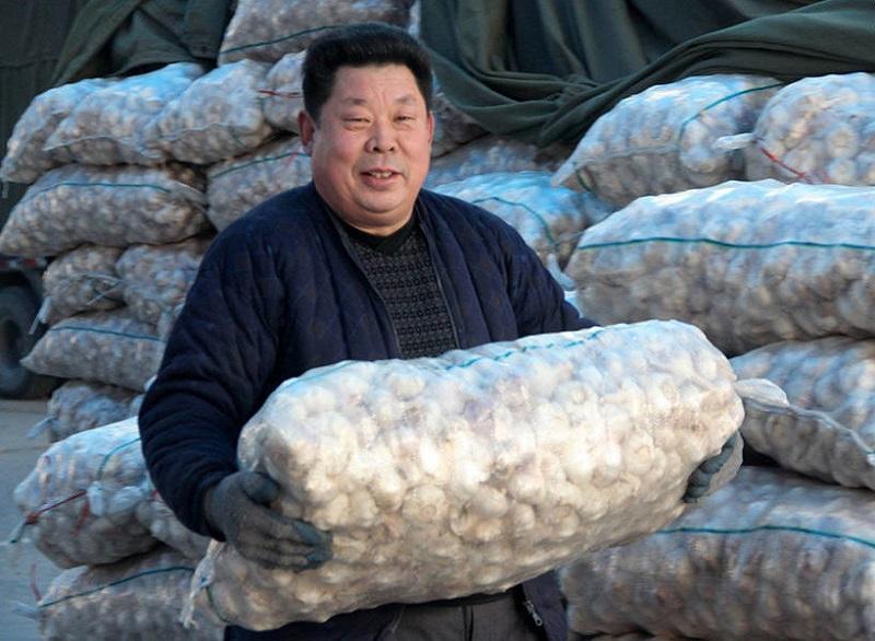 Uzmanību! Ķīniešu ķiploki pārpildījuši tirgu