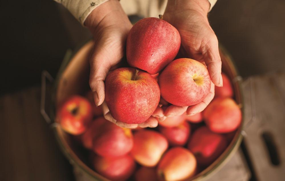 Izvēlies ābolu, un atklāj patiesību par sevi