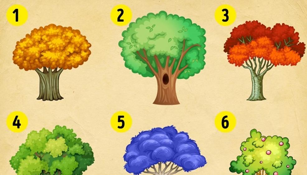 Uzzini, kādas pārmaiņas Tevi sagaida šogad! Izvēlies koku!