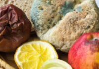 Piecas pazīmes, kas liecina, ka vairs nedrīkst ēst ēdiena pārpalikumus. Ļoti noderīga informācija!